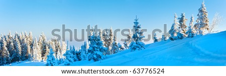 Morning winter calm mountain panorama landscape with fir trees on slope (Carpathian Mountains, Ukraine). Three shots stitch image. - stock photo