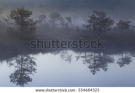 Morning with fog in the bog and reflection - stock photo