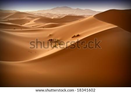 Moroccan desert dune background 10. Blue sky - stock photo