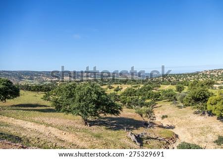 Moroccan landscape - Taroudant region - stock photo