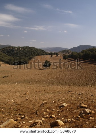 morocco - stock photo