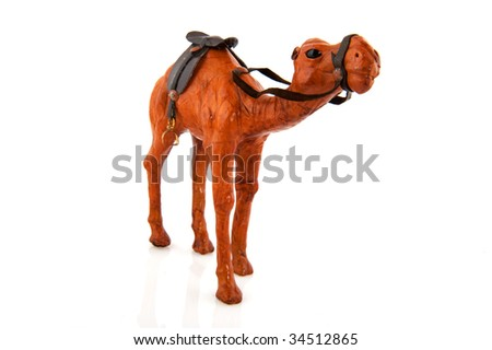 Morocco camel with saddle isolated over white