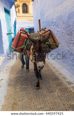 Morocco, Chefchaouen or Chaouen  is the chief town of the province of the same name.  Water is carried traditionally through the city by animals.