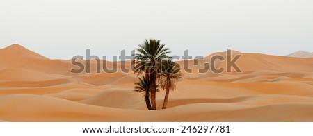 Morocco. Sand dunes of Sahara desert - stock photo