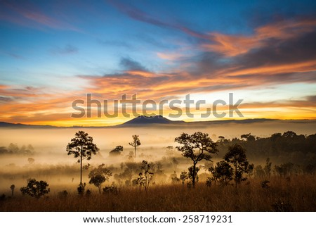 Morring sun rise in Thung Salaeng Luang national park, Petchaboon, Thailand - stock photo