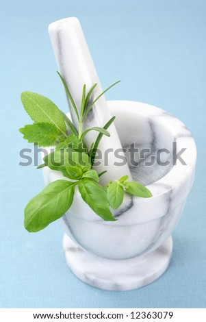 mortar and pestle full of various herbs - stock photo