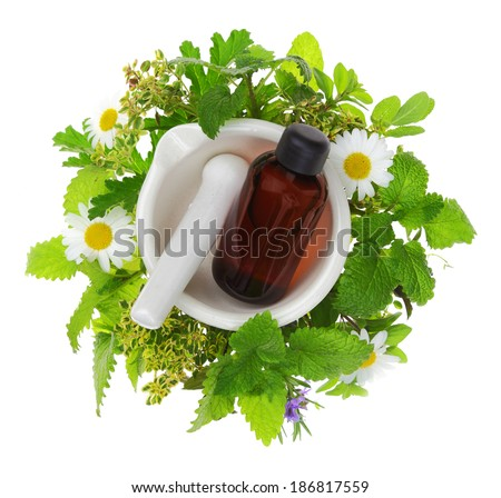 Mortar and pestle with fresh herbs and essential oil bottle - stock photo