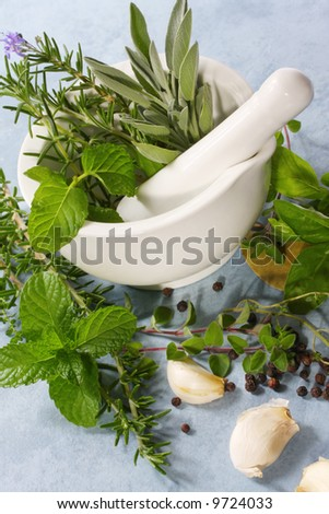 Mortar and pestle with fresh herbs, garlic and peppercorns.