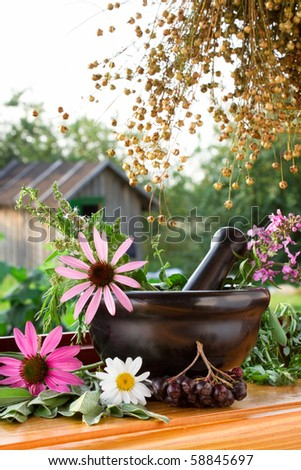 mortar and pestle with healing herbs - stock photo