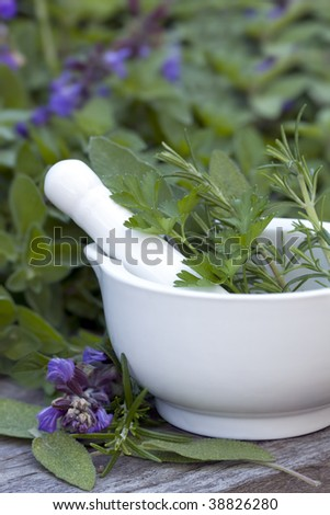 Mortar and pestle with herb garden behind.