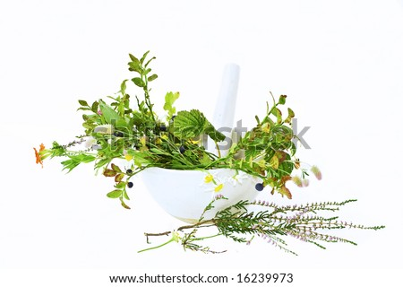 Mortar,fresh herbs and pastle isolated