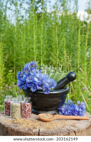 mortar with blue cornflowers and sage hyssop grass on background, herbal medicine - stock photo