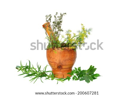 Mortar with culinary and medicinal herbs isolated on white. - stock photo