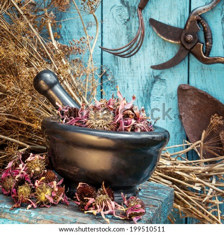 mortar with dried healing herbs and garden equipment outdoors - stock photo