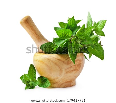 Mortar with fresh mint isolated on white background  - stock photo