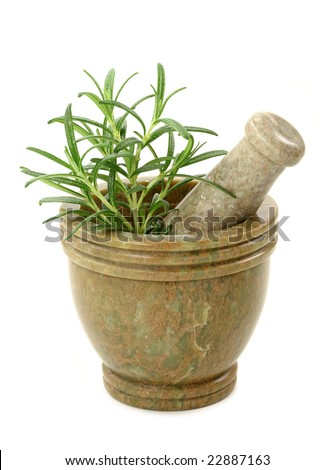 Mortar with fresh rosemary isolated on white background