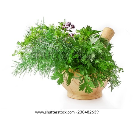 Mortar with herbs isolated on a white background - stock photo