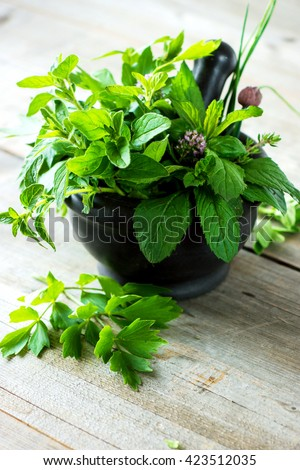 Mortar with herbs on wooden table - stock photo