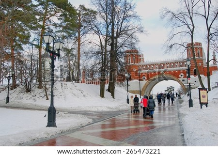 MOSCOW - FEBRUARY 01, 2015: View of Tsaritsyno park in Moscow, Russia, in winter. A popular touristic landmark.