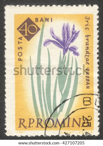 "MOSCOW, RUSSIA - CIRCA MAY, 2016: a post stamp printed in ROMANIA shows Iris brandzae flower, the series ""The 100th Anniversary of the Botanical Garden, Bucharest - Flowers"", circa 1961"