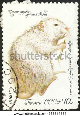 """MOSCOW, RUSSIA - DECEMBER, 2015: a post stamp printed in the USSR shows an animal with the inscription """"Myocastor coypus"""", series """"Fur Animals"""", circa 1980 - stock photo"""