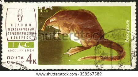 """MOSCOW, RUSSIA - DECEMBER, 2015: a post stamp printed in the USSR shows an animal with the inscription """"Desmana moschata"""", the series """"The 1st Theriological Congress"""", circa 1974 - stock photo"""