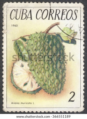"MOSCOW, RUSSIA - JANUARY, 2016: a post stamp printed in CUBA shows a fruit Annona reticulata, the series ""Tropical fruits"", circa 1965 - stock photo"