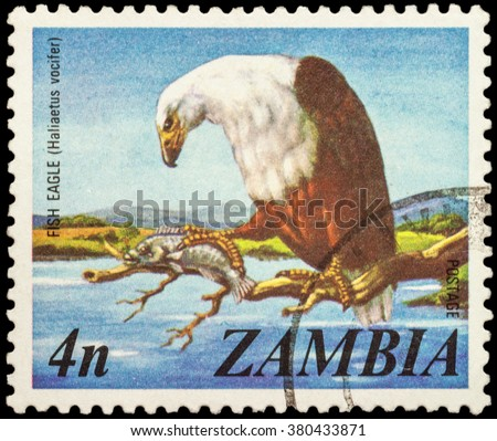 "MOSCOW, RUSSIA - JANUARY 22, 2016: A stamp printed in Zambia shows African fish eagle (Haliaeetus vocifer), series ""Local Motifs"", circa 1975 - stock photo"