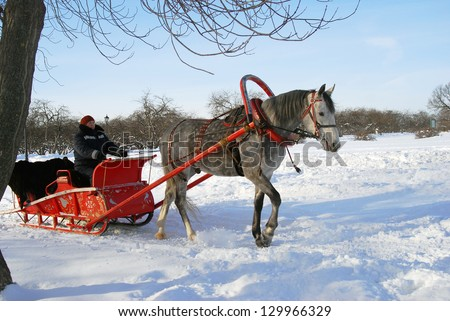 MOSCOW, RUSSIA - JANUARY 27: Red sleigh pulled by a horse in a winter park. Traditional Russian winter fun. Taken on 27.01.2013 in Kolomenskoye, Moscow, Russia.