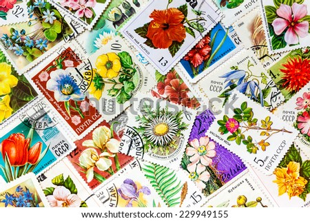 "MOSCOW, RUSSIA, JANUARY 8, 2014: Stamps printed in the USSR, united by one theme - ""Flowers"", arranged background - stock photo"