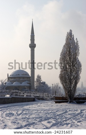 Mosque and poplar tree in winter - stock photo