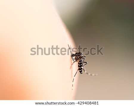 Mosquito bite on human skin (selective focus) - stock photo