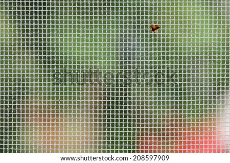 Mosquito net on the window of the country house - stock photo