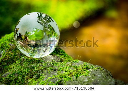 MOSS and glass globes