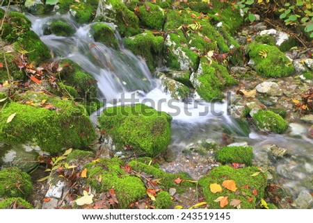 Moss covered rocks and rapid stream of water in autumn - stock photo