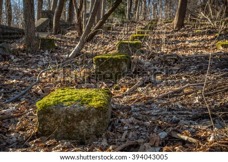 Moss covered rocks arranged in a line.