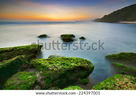 Moss covered rocks on the rocky reef shelf at sunset at Pok Tunggal Beach, Jogjakarta - stock photo