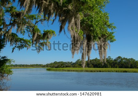 Moss draped Live Oak over the Edisto River at Botany Bay Plantation in South Carolina - stock photo