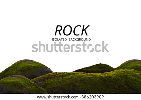 Moss grow on sea rock and white background. Beautiful green cliff and material detail. - stock photo