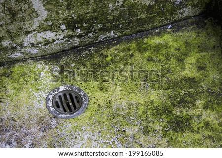 Polluted Lake Shore Earth Ecology Stock Photo 31602907