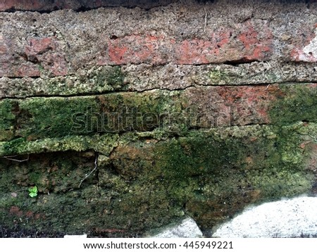 moss on the old brick wall,out of focus - stock photo