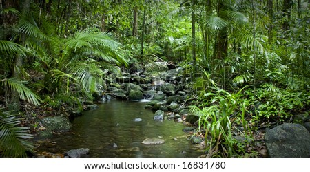 Mossman George river in northern Daintree - stock photo