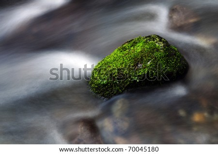 Mossy Rock in Flow - stock photo