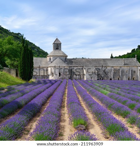 Most beautiful lavender field in Provence. An ancient monastery Abbaye Notre-Dame de Senanque ( Abbey of Senanque) at early morning. Vaucluse, France  - stock photo