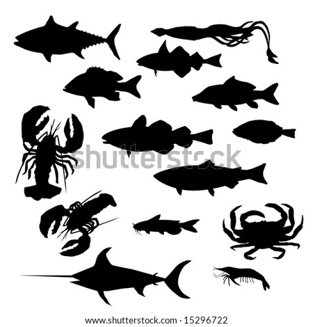 Most popular seafood collection. - stock photo