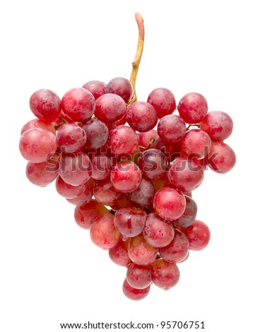 most ripe and juicy bunch of grapes isolated on white close-up - stock photo