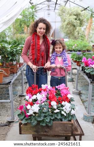 Mother and daughter driven cart with beauty flower in the greenhouse - stock photo