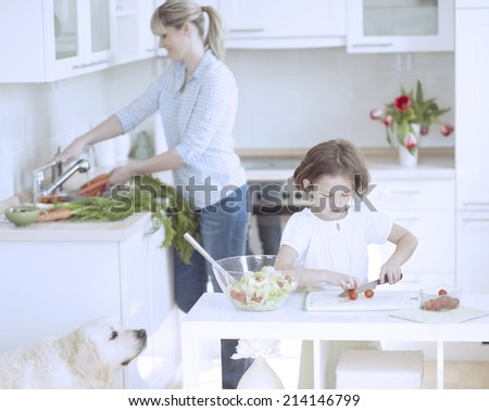 Mother and Daughter (8-9) preparing healthy meal in kitchen - stock photo