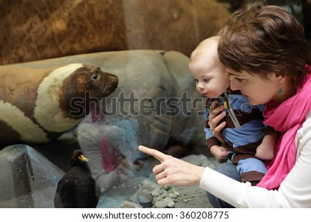 Mother and her son looking at sea lion in the museum - stock photo