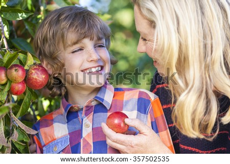 Mother and son, boy child and woman, laughing together, picking and eating an apple in an orchard outside in summer sunshine